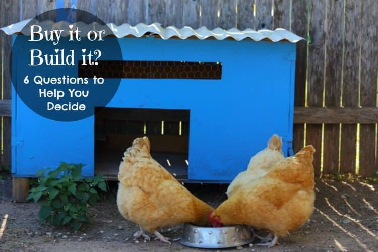 Should you build or buy your next chicken coop?  6 questions to help you decide