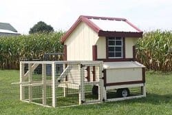 Quaker Coop with Handles by Sheds Unlimited