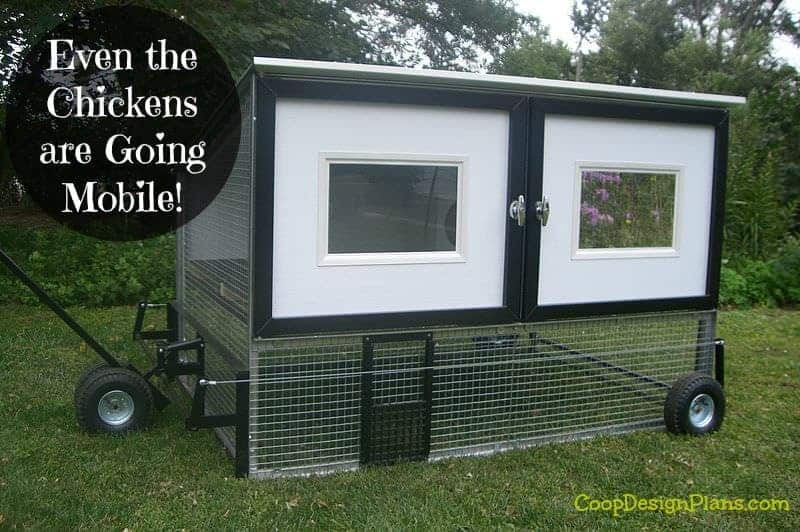 Setup a mobile chicken coop and free range those birds for Mobile chicken coop plans