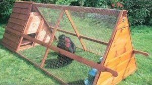 A Frame Portable Chicken Coop