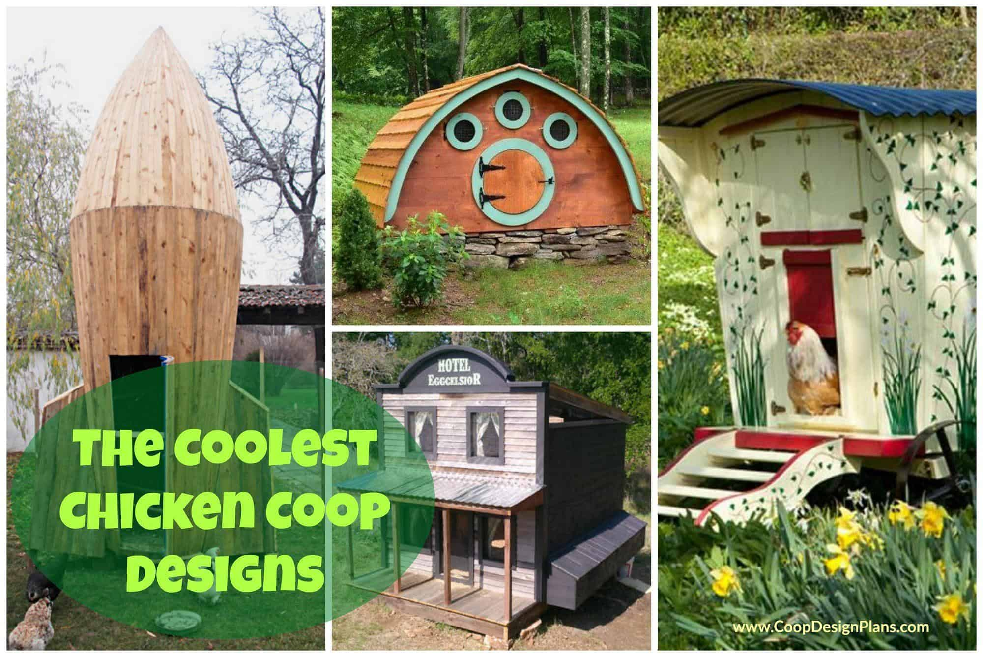 cool chicken coop collage