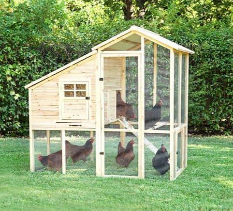 Petmate Wooden Chicken Coop