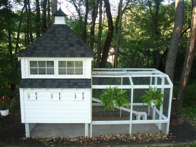 6' X 8' white raised chicken coop with run from backyard chickens