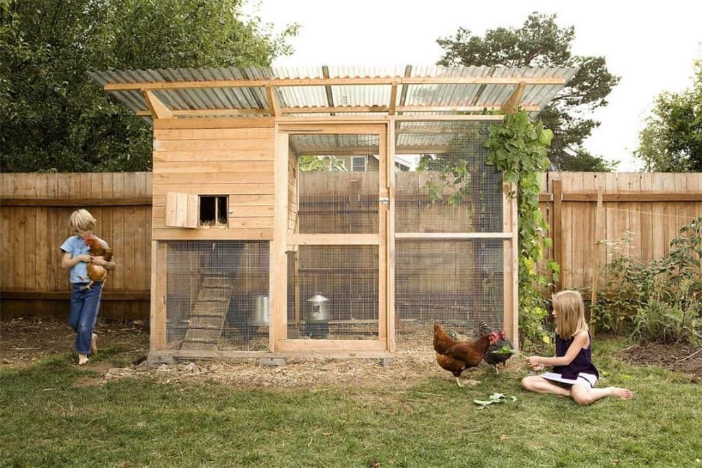 The garden coop - a walk in style wooden chicken coop screened in walls